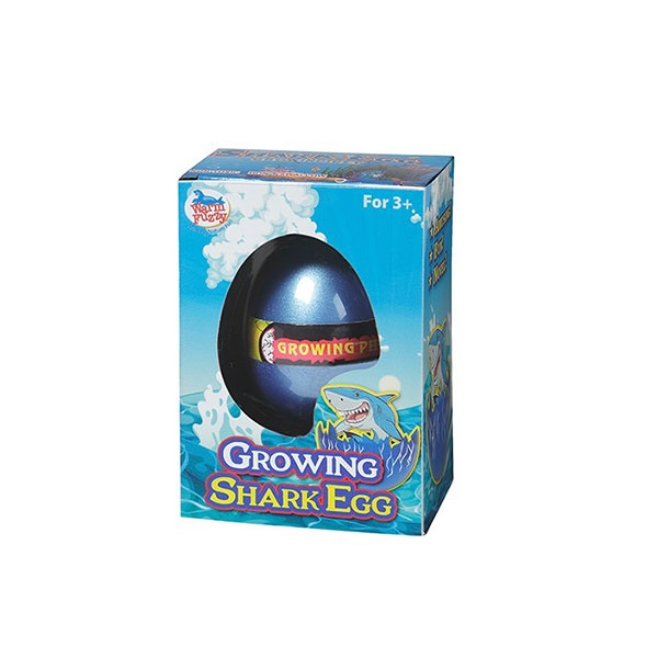 SHARK HATCHING EGG